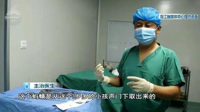 5岁男孩气管内发现活蚂蟥,已存活一年多!医生提醒