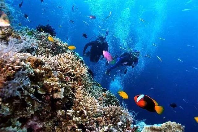 91u行程丨马尔代夫的海+法式浪漫风情 这儿才是你向往的度假地!