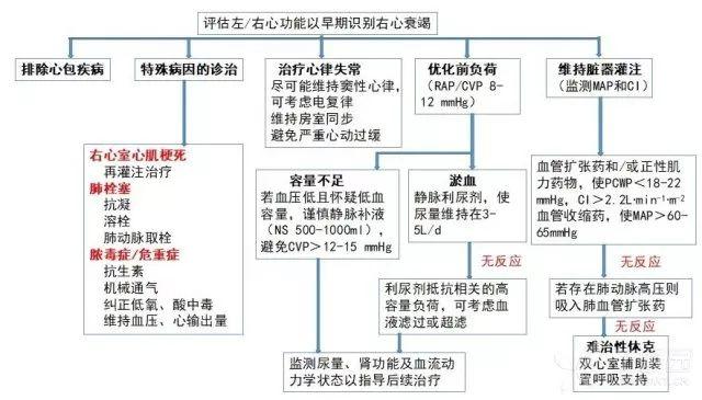 2018 中国心衰指南 | 你不可不知 32 个更新