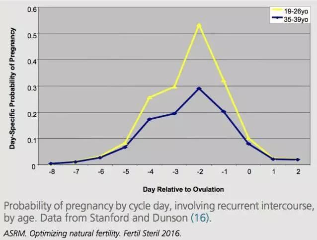 长期备孕没结果?10条提升怀孕率锦囊给你
