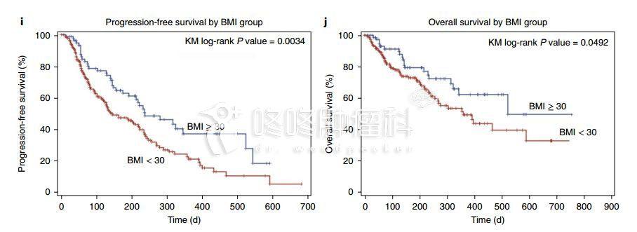 胖子也有专属福利?PD1、靶向药疗效更好!